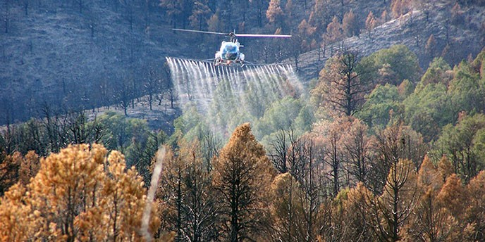A helicopter spreads liquid herbicide over a burned landscape.