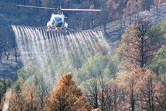 Plane dispersing herbicide into the forest
