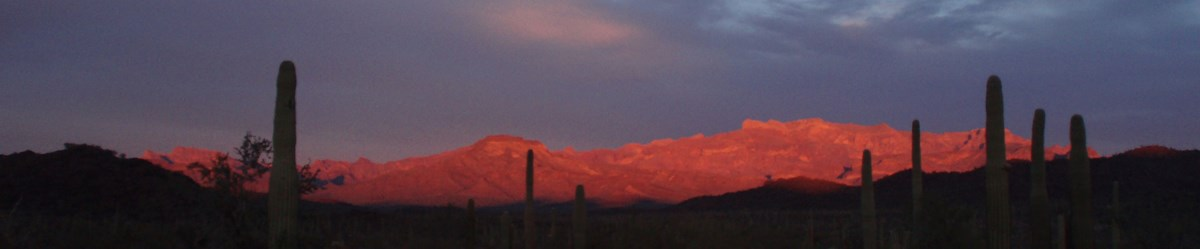 Ajo Mountains at Sunset