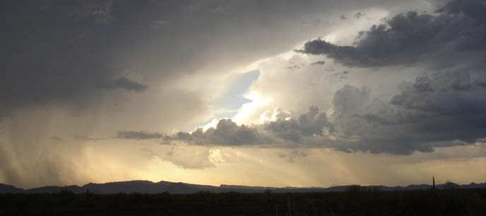 Storm over Organ Pipe Cactus NM