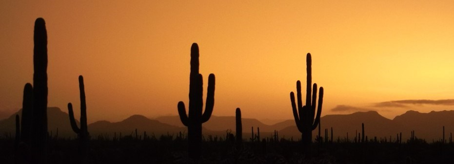 orange sunset and shadows across the vast desert