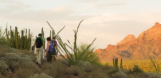 Hikers at Organ Pipe Cactus National Monument