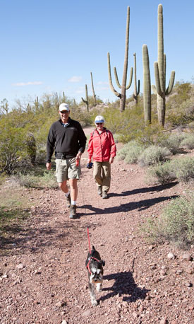Pets are welcome in certain areas of Organ Pipe Cactus National Monument