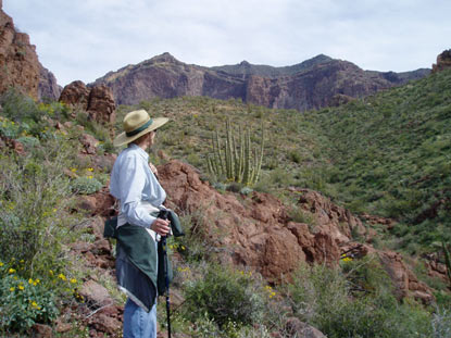If the trail seems steep, the view is worth it.   Photo of a hiker on Bull Pasture Trail.