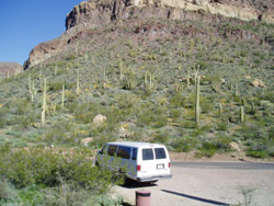 Van tours offered in the winter, allow visitors to experience the Ajo Mountain Drive with a guide.
