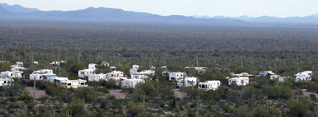 Camping at Twin Peaks campground in Organ Pipe Cactus National Monument