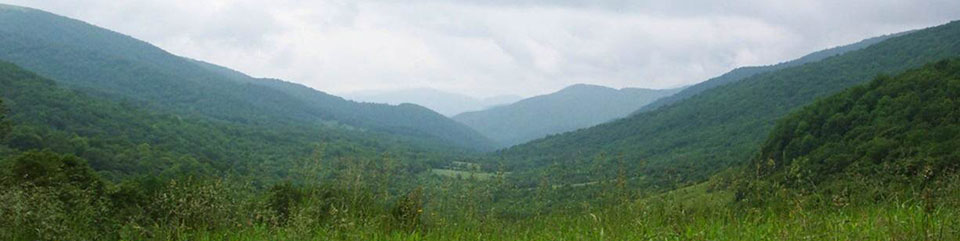 Roaring Creek viewshed in North Carolina looking east at about 4,600 feet elevation.