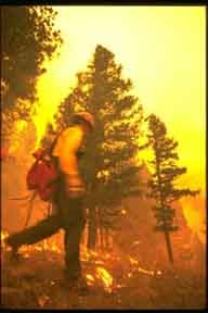 Image of firefighter running in burning forest