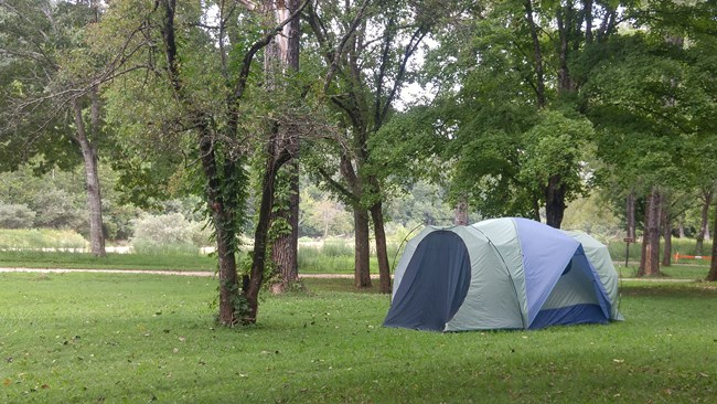 Camping tent set up on park grounds