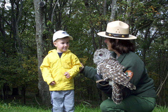 Ranger-with-owl