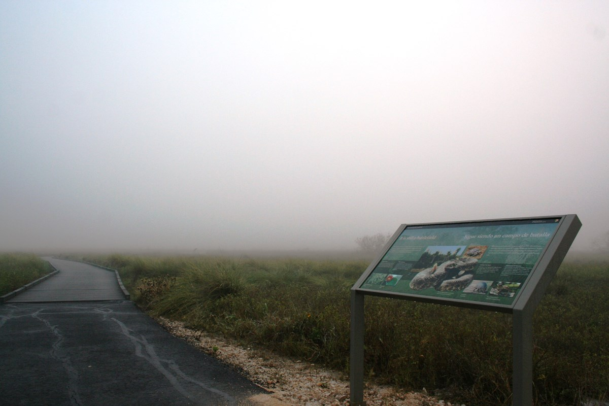 Dense fog encompasses the battlefield