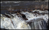 The Passaic River water falling over a small ledge creating a waterfall