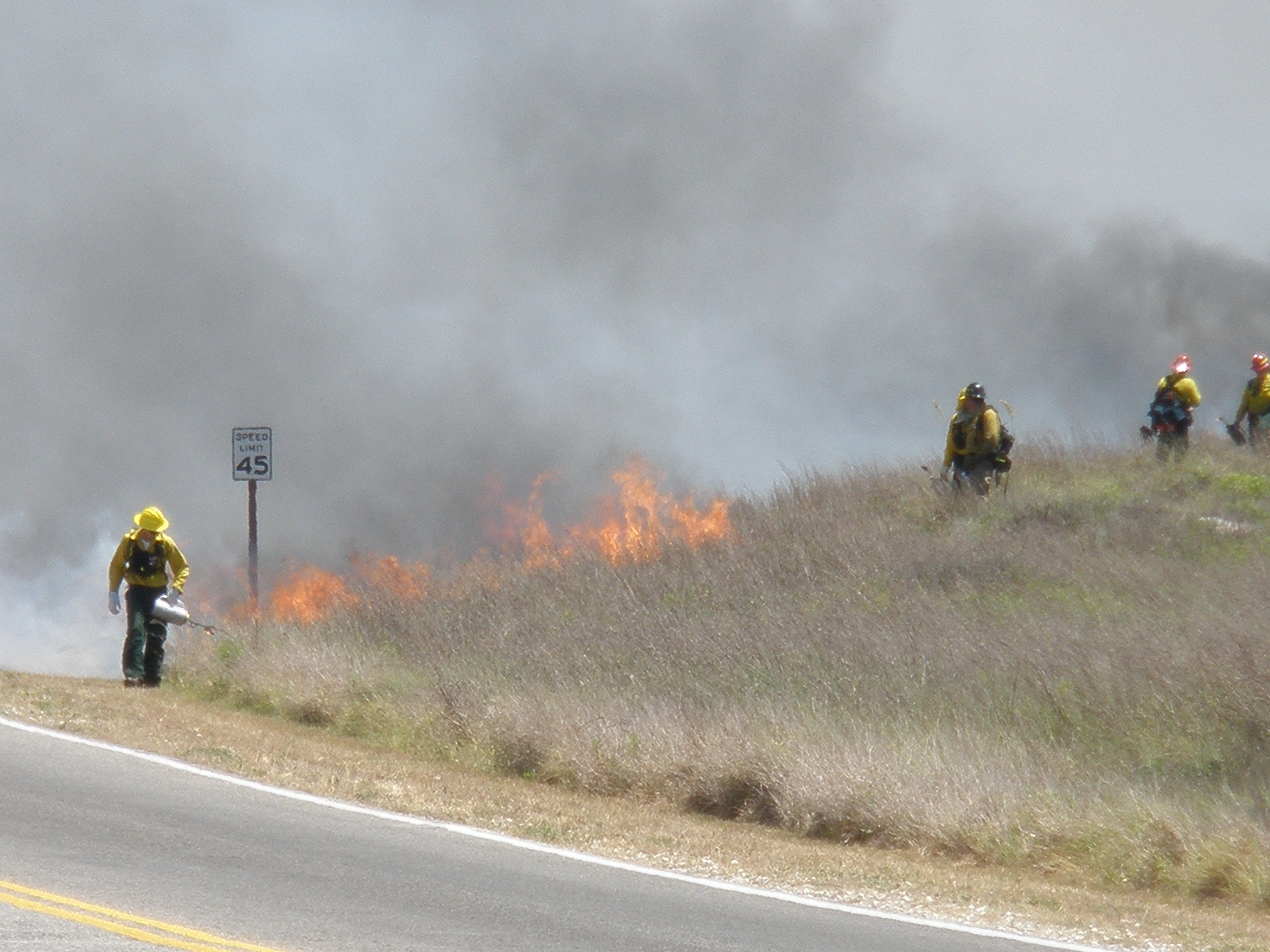 Prescribe Burn at Padre Island