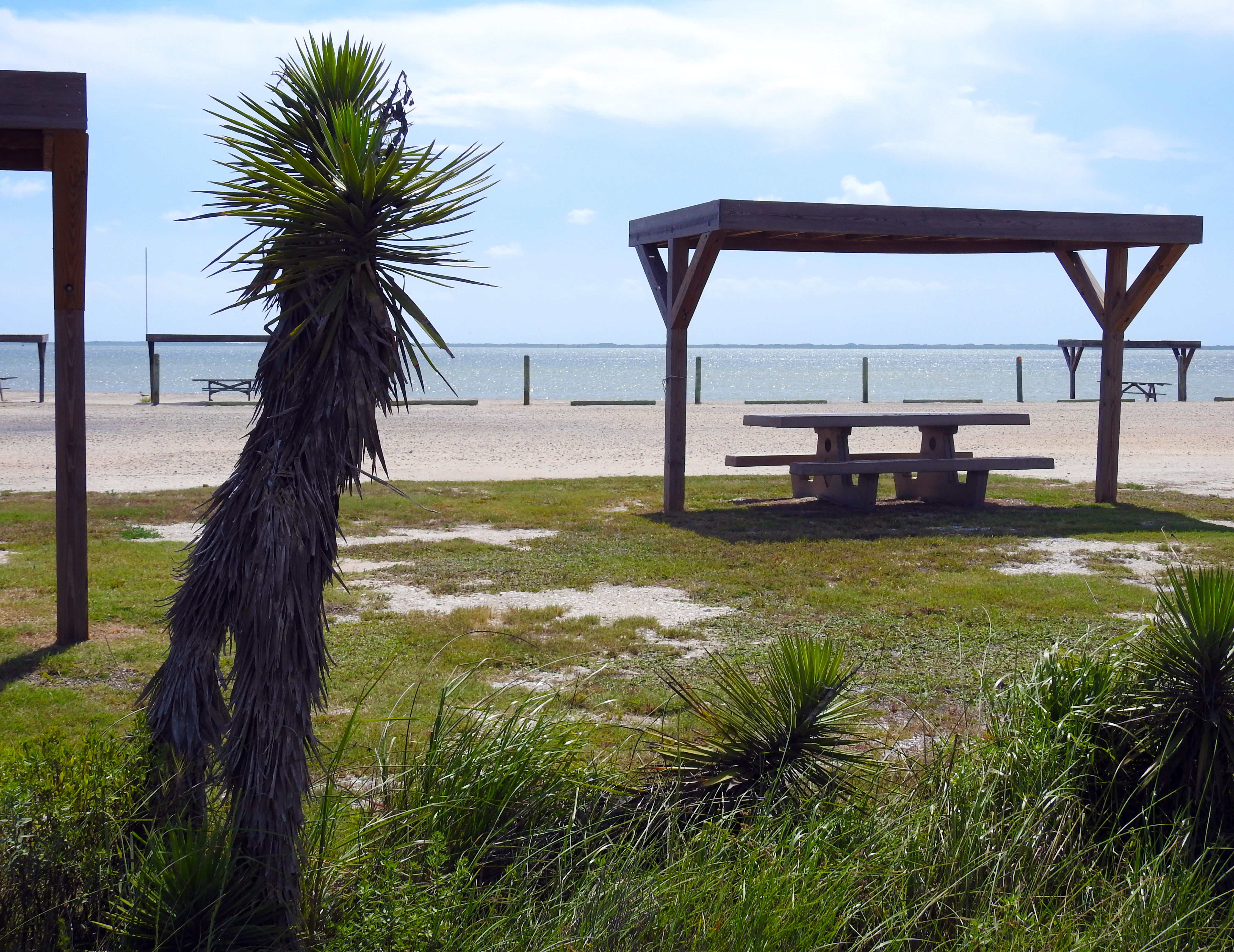 Campsite at Bird Island Basin Campground with the Laguna Madre in the background.