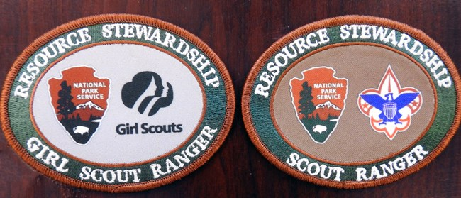 Two scouts patches that both Girl and Boy Scouts can earn