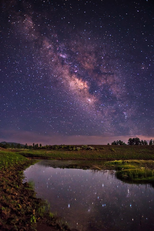 A star lit watering hole with the milk way overhead.