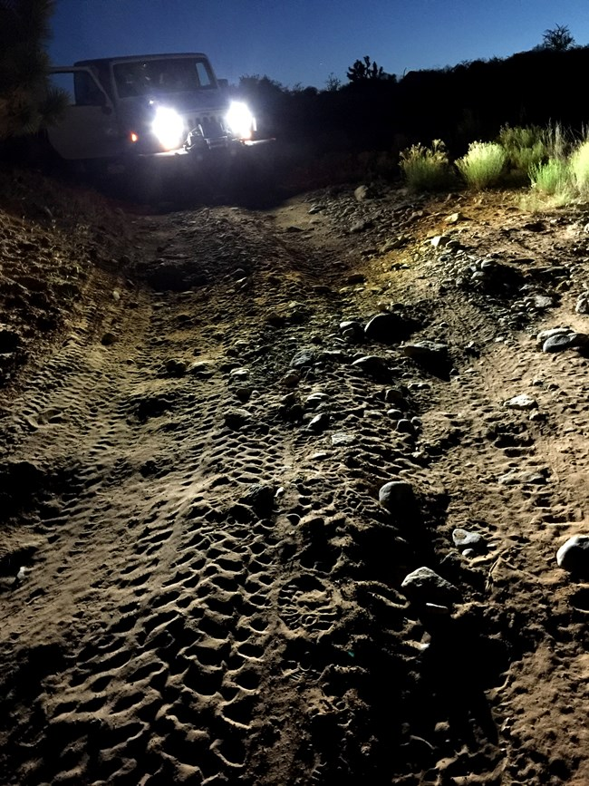 Jeep and tire tracks at night