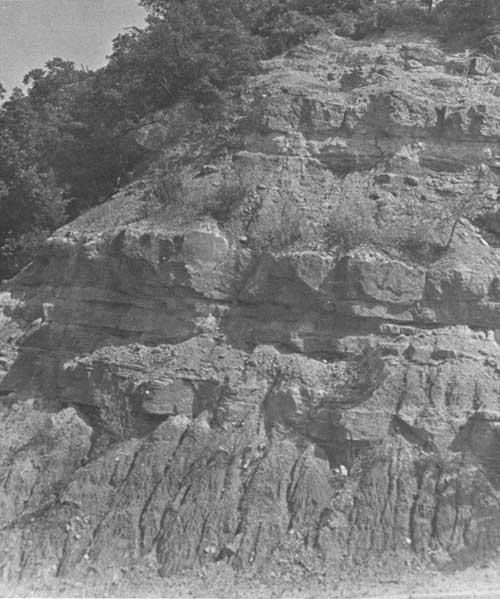 Platt National Park: Environment And Ecology (Chapter 2