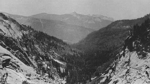 sequoia national park online dating Yosemite national park  after being closed to the public for nearly three years, mariposa grove, the storied forest of giant sequoia trees at yosemite national park first set aside for protection by abraham lincoln, is set to re-open friday mo.