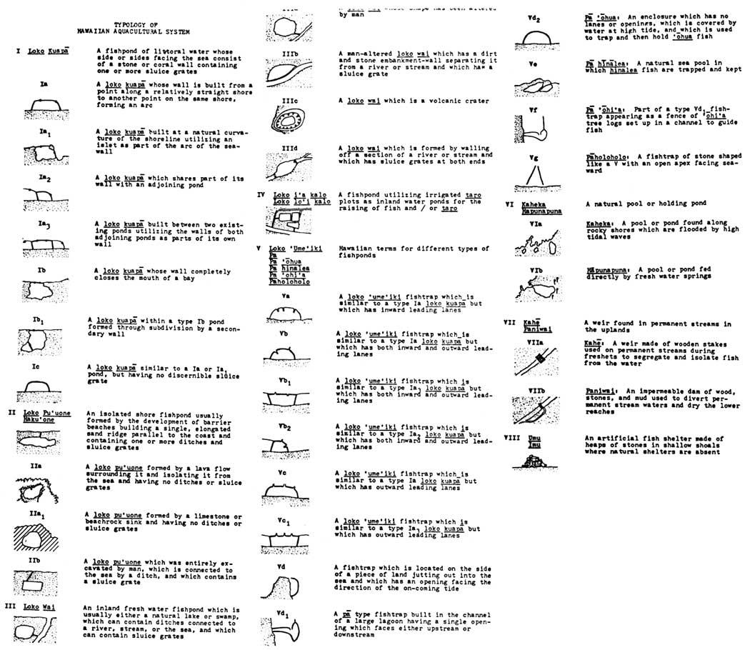 Ancient Hawaiian Symbols Google Images