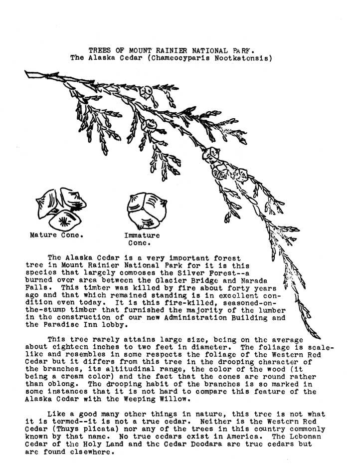 Mount Rainier National Park (Nature Notes)