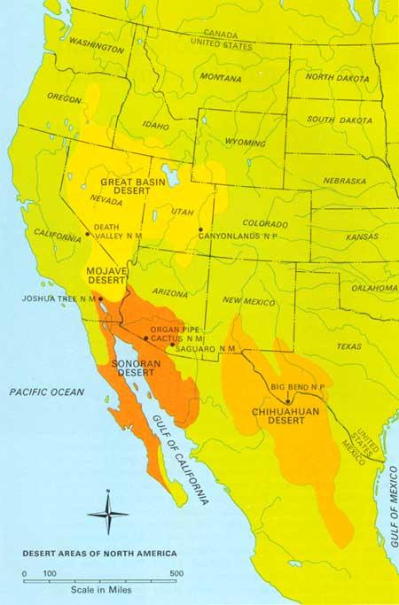NPS Natural History Handbook: Saguaro