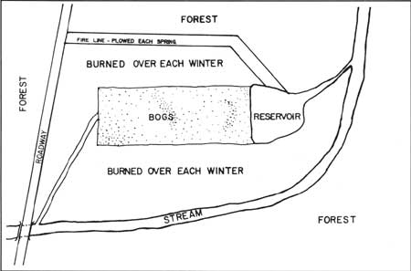 this drawing ilrates the layout of the cranberry bogs and reservoir cranberry growing