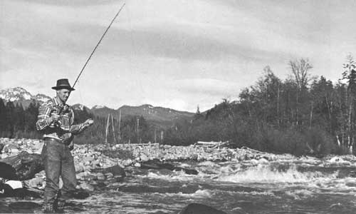 The north cascades study report the north cascades for Nisqually river fishing report