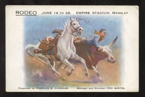 Post Card with picture of a horse, man, and steer