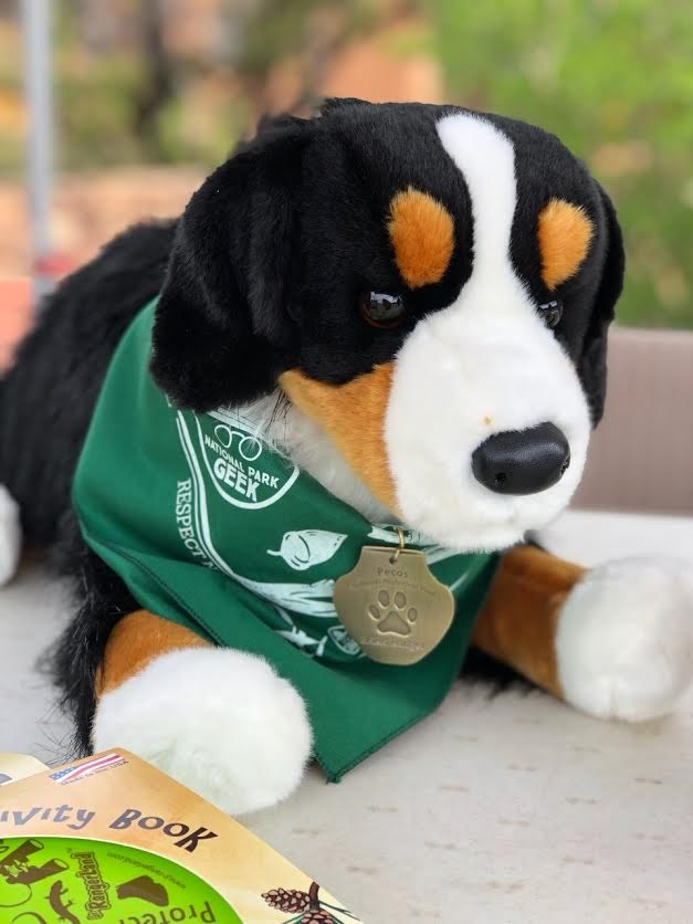 A stuffed animal dog with a bandanna and dog tag around its neck.