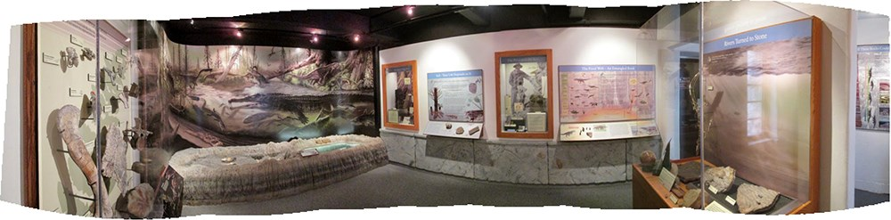 a panorama of paleontology exhibit room
