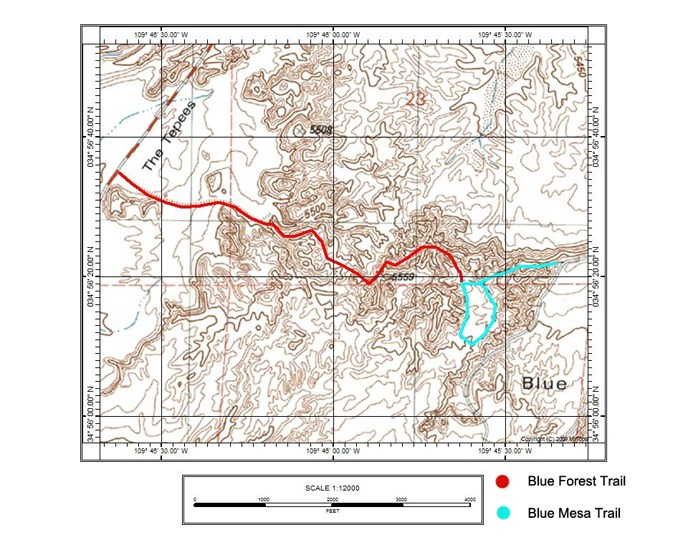 Blue Forest and Blue Mesa Trails Map