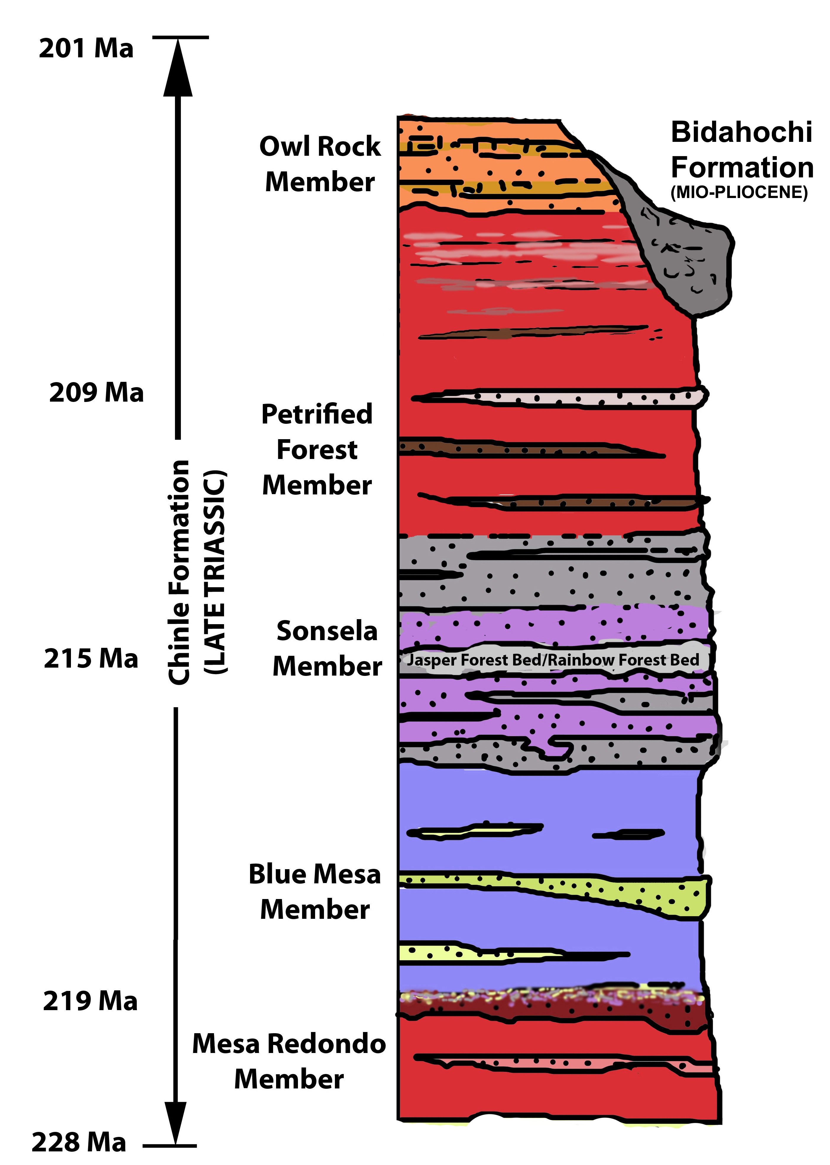 Petrified forest national parks first park geology map is a hit diagram on the park website pooptronica