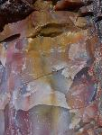 Close up of petrified wood, Petrified Forest National Park2a