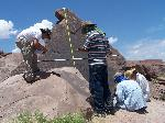 Surveying Petroglyphs, Petrified Forest National Park