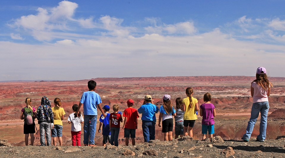 Students overlook the red part of the Painted Desert
