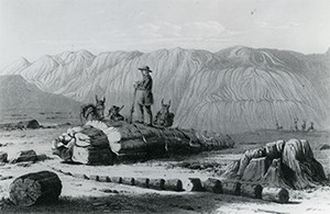 etching of soldiers and horses among petrified logs and badlands