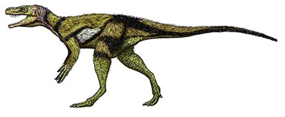drawing of dinosaur in profile