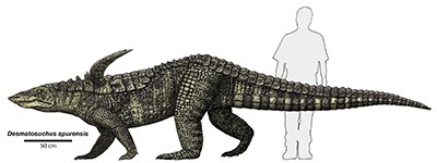 illustration of large reptile with spikes on shoulders