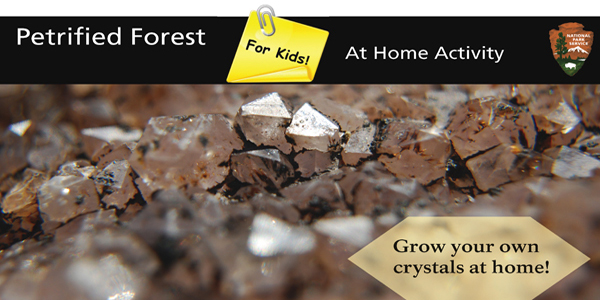 Crystal Growing Activity