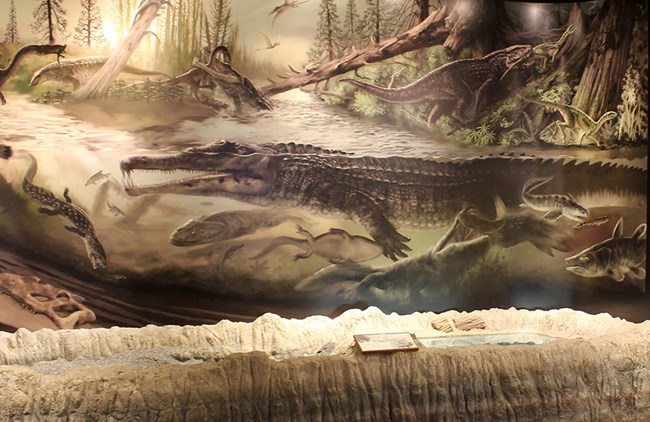 Late Triassic scene in Blue Mesa Room, Rainbow Forest Museum