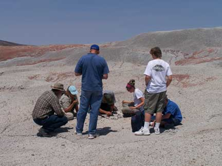 students and teachers watch during a fossil excavation