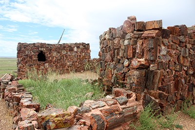 Agate House is an ancient building constructed of petrified wood.