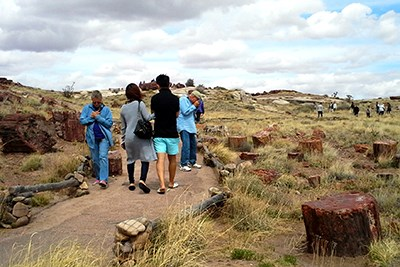Visitors walk through the petrified wood along Giant Logs Trail