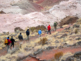 hikers follow park volunteer in painted desert