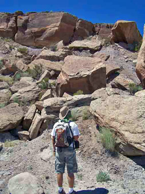 Petrified Forest National Wilderness Area Hiker