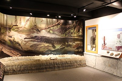The Blue Mesa displays and Late Triassic mural
