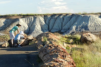Two hikers stop to look at petrified logs along Crystal Forest Trail