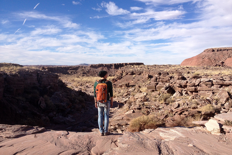 Solo hiker among red mesas in the wilderness area