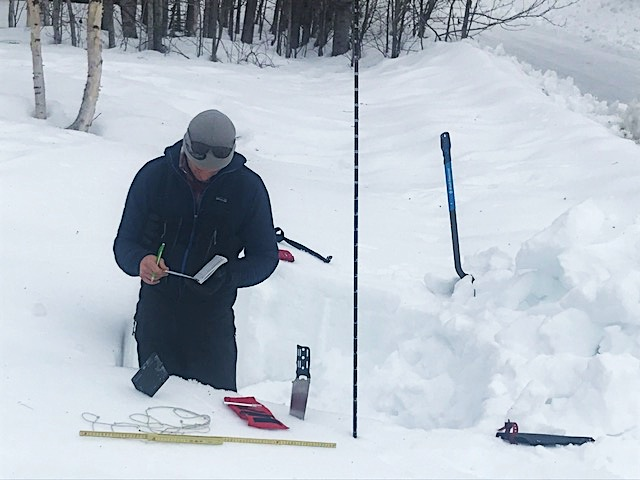A ranger studies the snowpack and assesses for avalanche hazard